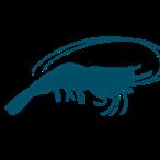 یکی از گونه های باارزش آبزی پروری در دنیا پرورش میگو است. در حال حاضر از 6 میلیون تن میگوی تولیدی در جهان، بیش از نیمی از آن پرورشی است و در این میان حدود 5/2 میلیون تن از میگوی پرورشی جهان مربوط به گونه وانامی می باشد که امروزه در منطقه گمیشان در حال پرورش می باشد.